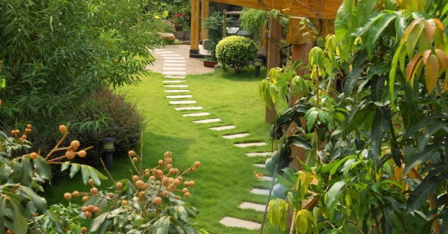 Easy Steps To Renovate Your Garden