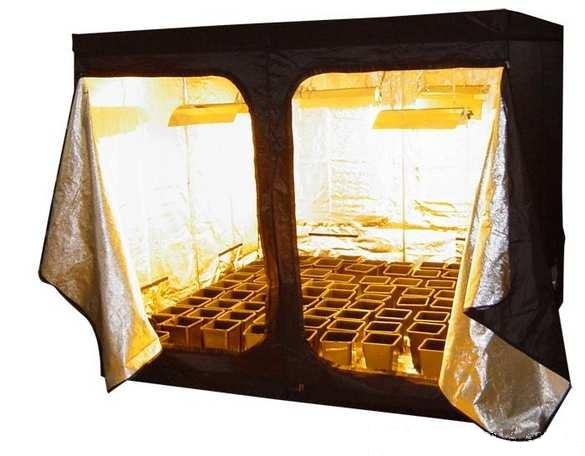Necessity Of Making Use Of Grow-Tents