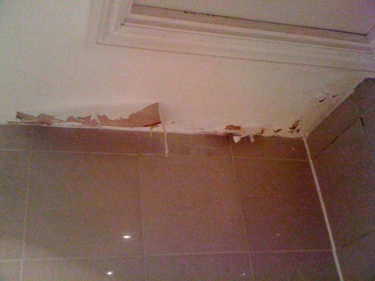 Why Is Damp Proofing Necessary For Any Property?