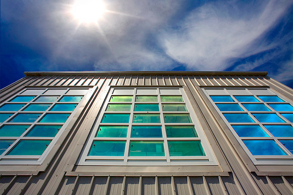 How Window Types Can Significantly Alter Your Energy Bill