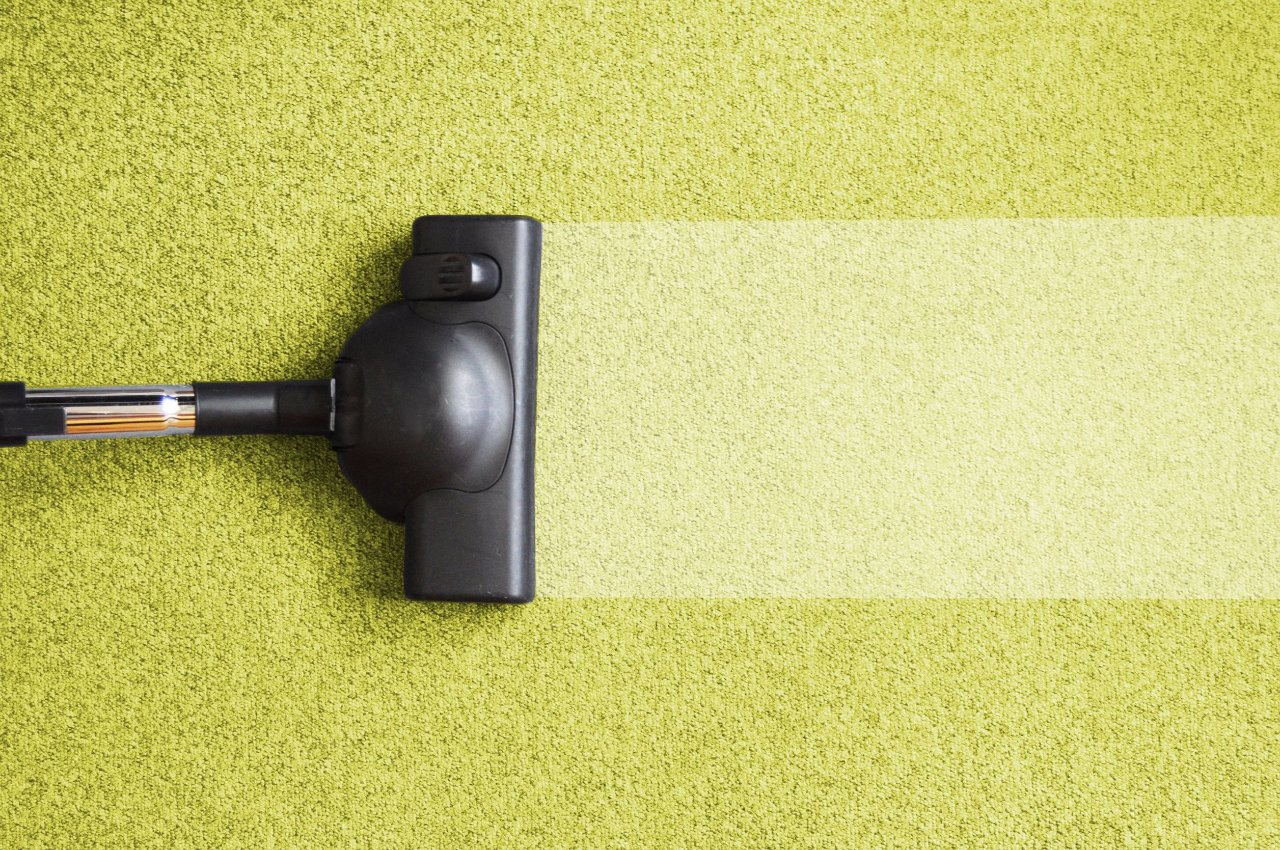 Why Is Professional Carpet Cleaning Required In Households?