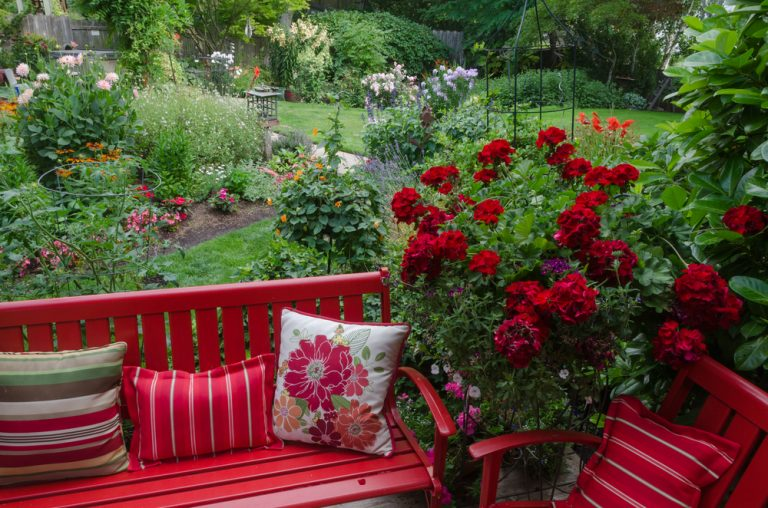 How To Quickly Improve Your Garden