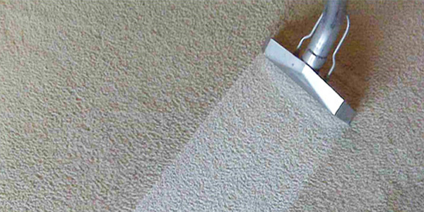 What To Expect The Day After Carpet Cleaning