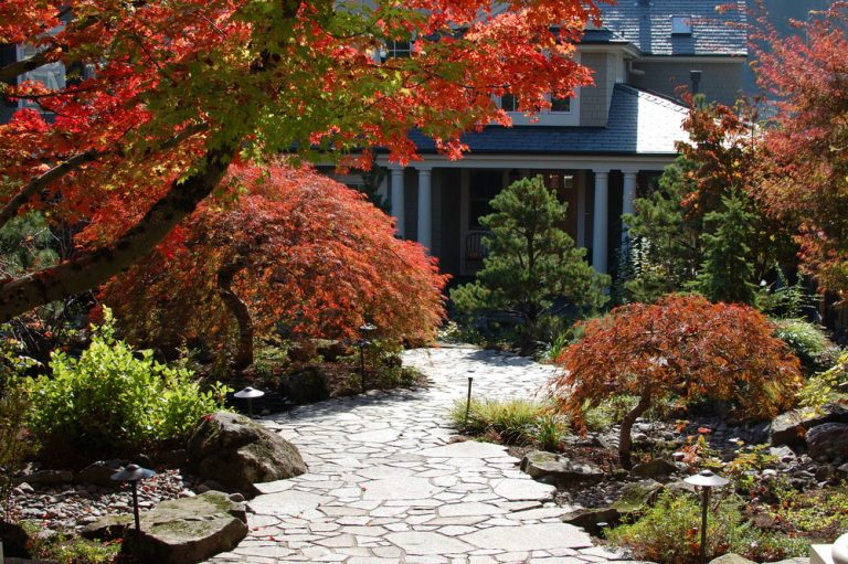 Get Landscape Ways To Improve Control Attraction At Lawn Centers
