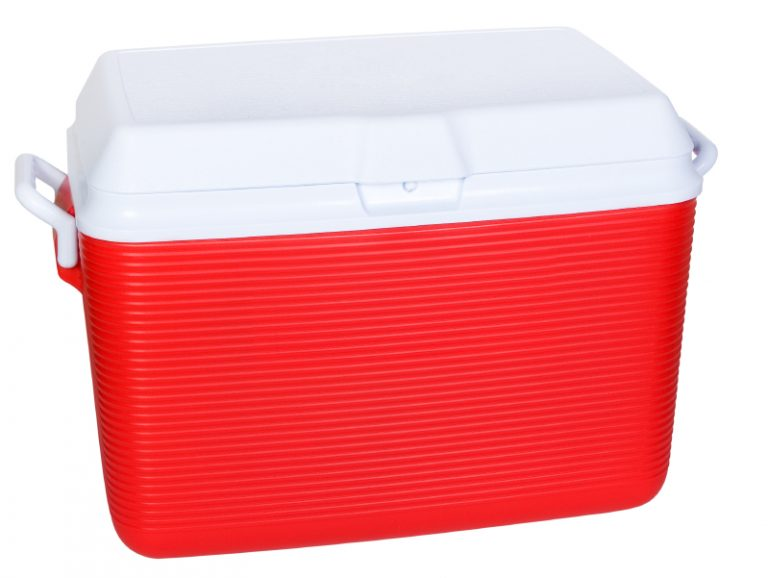 What Makes Small Coolers The Coolest Portable Ice Chest