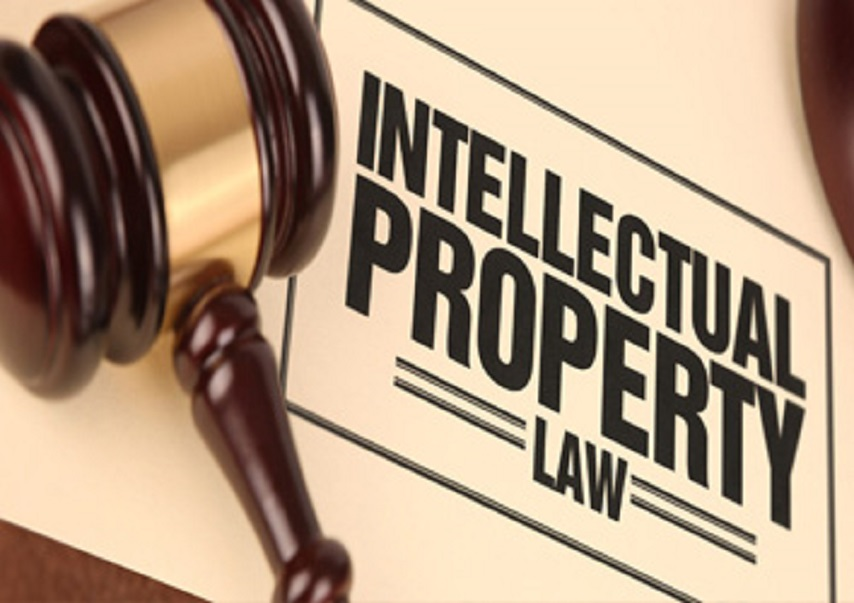 Key Roles and Responsibility Of Property Advocates In Delhi