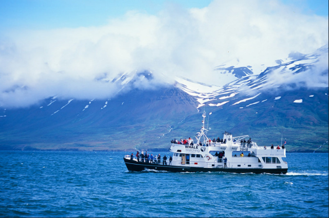 Extreme Iceland: TOP 7 Boating Tours Along The Icy Fiords