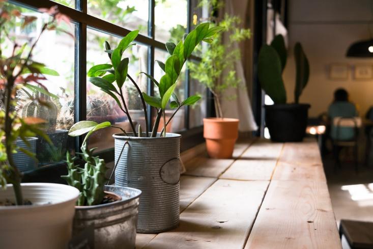 6 Tricks To Make Your Home Cozy