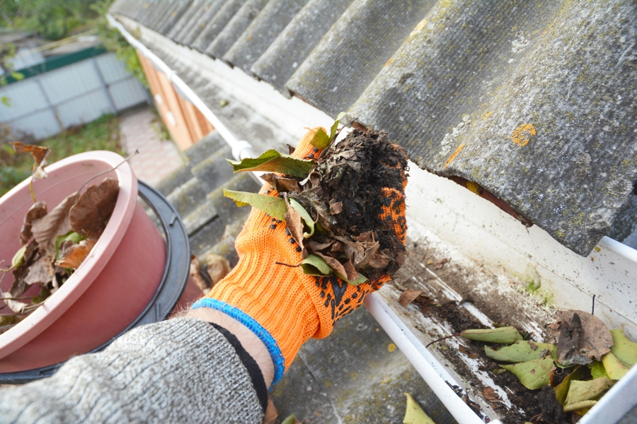 Gutter Cleaning In The North Shore – What Equipment Do You Need?