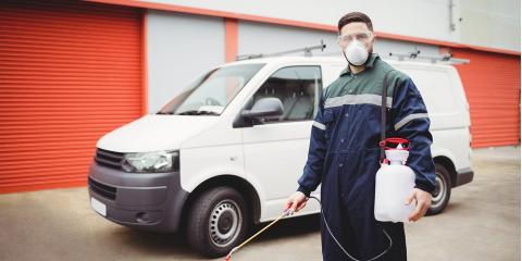 6 Reasons To Hire A Professional Pest Control Company