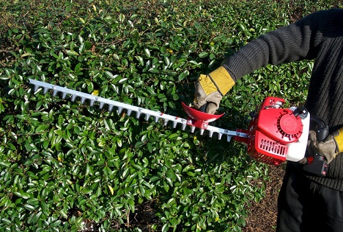 These 9 Mistakes will Destroy Your Hedge Trimmer