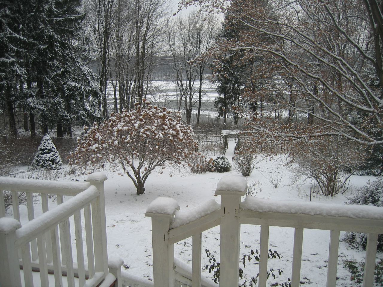 How to Prepare Your Garden for an Enjoyable Winter